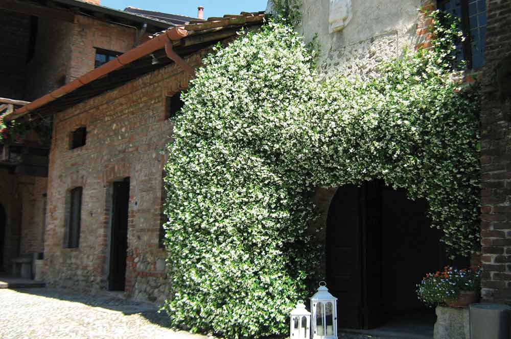cascina rustica borromeo vimercate weddings 3